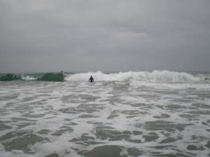 Surfers trying (hard!) to negotiate the waves